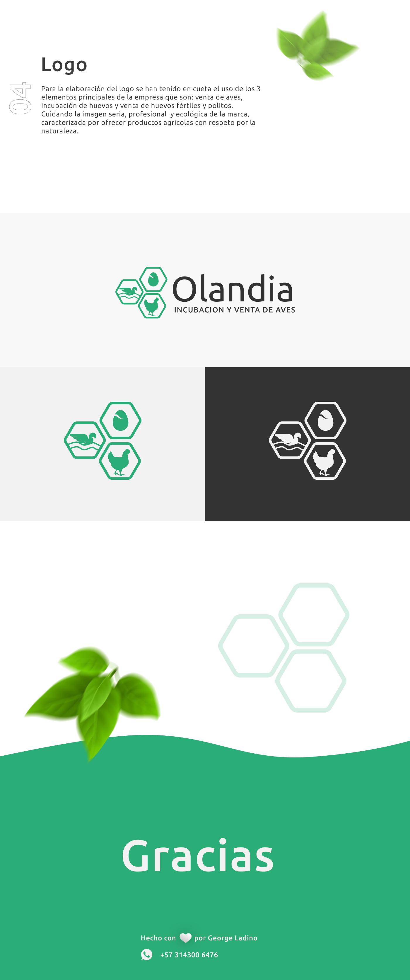 Diseño Logo pagina web oladia